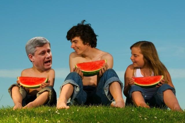 harpermelon