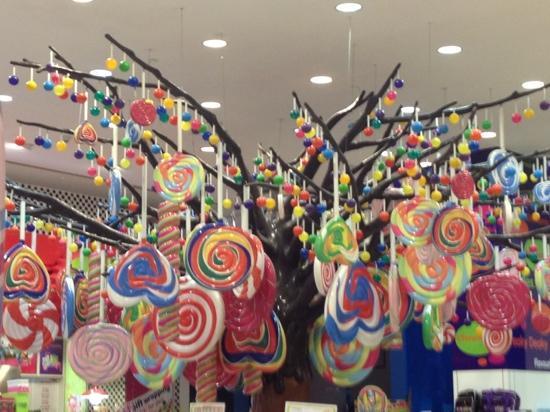 the-lollipop-tree-in