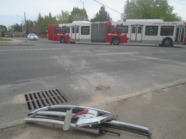 bleedsbus