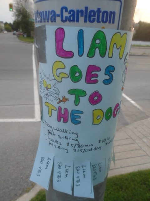 liamdogs